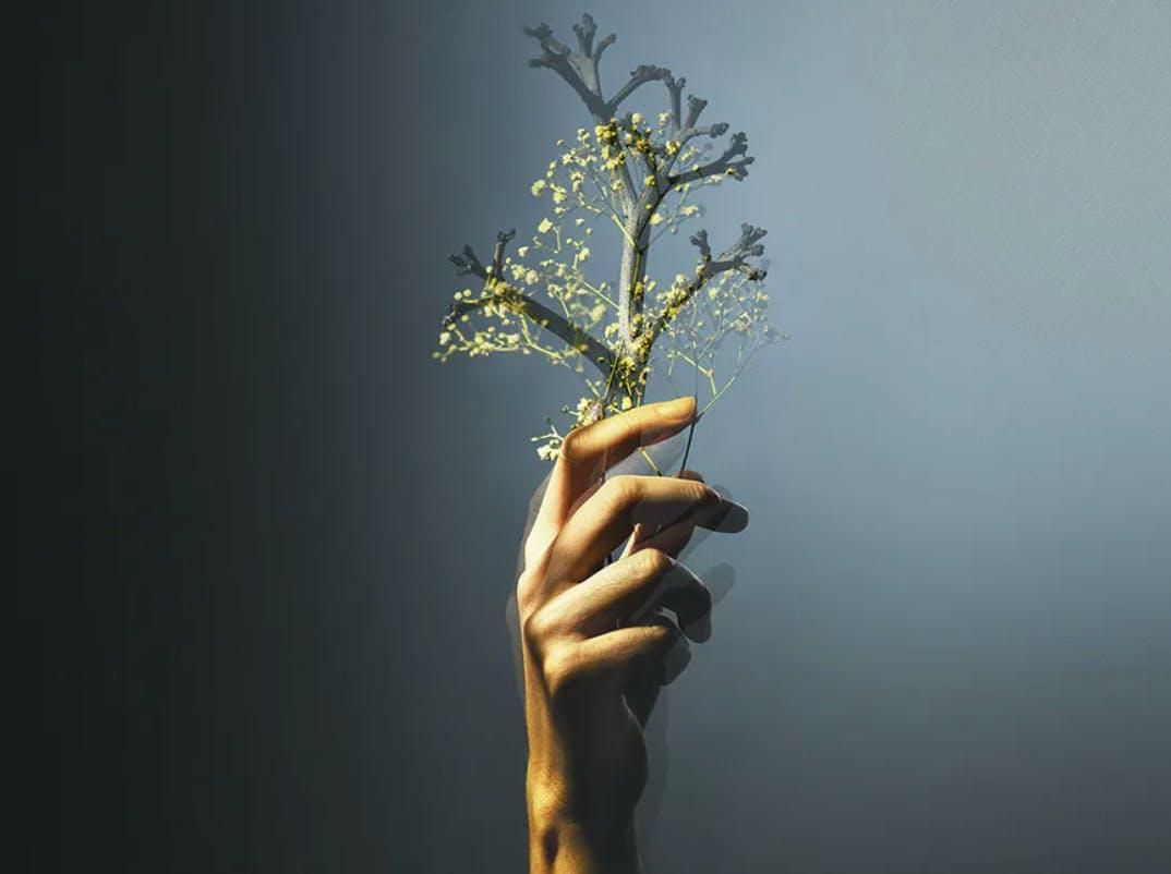 Já chegou Sunlit Days, a primeira coleção da Silestone® neutra em carbono